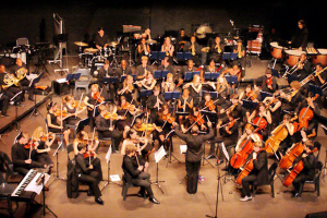 The Johannesburg Youth Orchestra anchors the Naledis