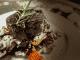 NEIGHBOURHOOD CHEF'S BEEF FILLET'S A TREAT WITH DROSTDY HOF'S MERLOT