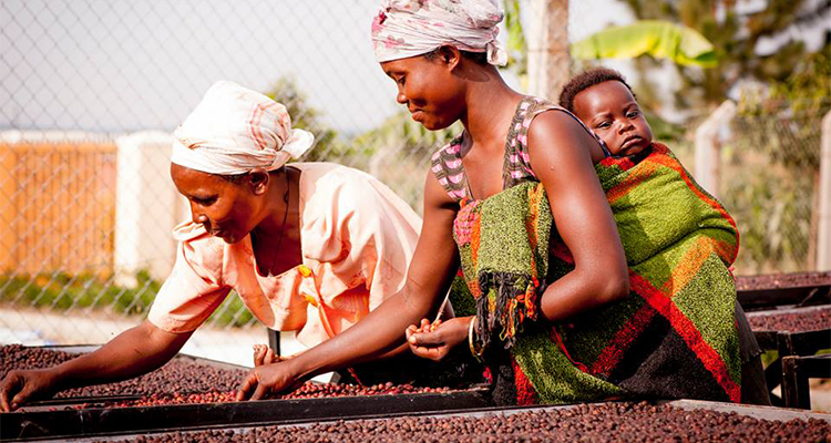 COTTON ON BODY LAUNCHES COFFEE SCRUB WITH 100% OF PROCEEDS GOING TO CHARITY