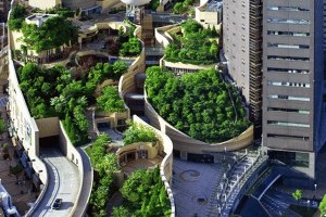CREATING A GREENER URBAN JUNGLE