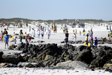City gets feet wet cleaning up the coast