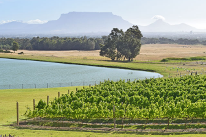 KLINK ADDS MORE FIZZ TO ITS 2016 AWARDS – CALLING WINE TOURISM BUSINESSES TO REGISTER FOR KLINK 2016