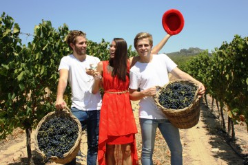 OMMIBERG CELEBRATING A DECADE OF YOUNG WINES