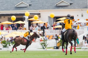 ANNOUNCING THE 2017 VEUVE CLICQUOT MASTERS POLO CAPE TOWN