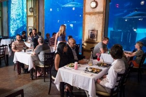 DON'T MISS CARGO HOLDS LOVE OF CULINARY ADVENTURE THIS MONTH - CELEBRATING THE PORT OF SAN FRANCISCO