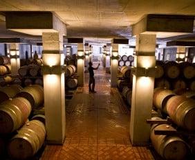 Wine-Cellar-at-Steenberg-Vineyards
