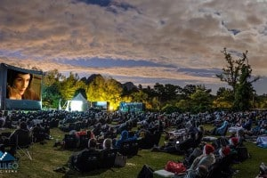 LIFE OF PI UNDER THE STARS AT ANTHONIJ RUPERT WYNE