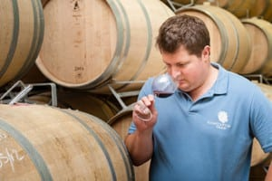 WINE JEWELS IN THE MAKING FROM CONSTANTIA GLEN HARVEST 2017