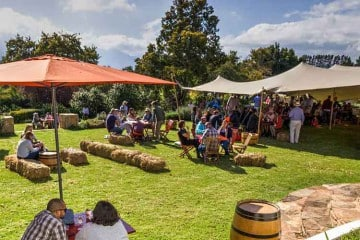 A STELLAR PAUL CLUVER WINES LINE UP AT THIS YEAR'S ELGIN COOL WINE & COUNTRY FESTIVAL