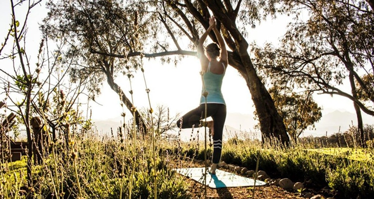 YOGA AND WELLNESS RETREAT AT BOSCHENDAL