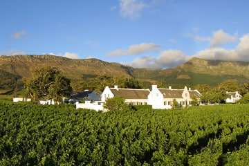 Steenberg winter escape in Constantia vineyards