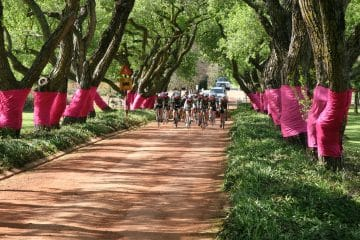 TOUR OF GOOD HOPE DRESSED IN PINK