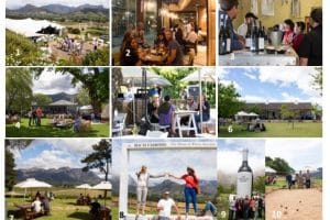 Uncorked Festival