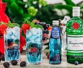 Fitch & Leedes launches sensational new Blue Tonic