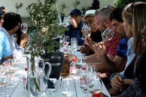 GRANDE PROVENCE HARVEST FESTIVAL IS A BARREL OF FAMILY FUN