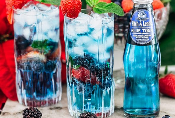 Fitch & Leedes brings first G&T festival to Port Elizabeth