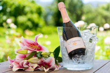 SA BUBBLY - MORE REASON TO CELEBRATE! A Q&A with L'Ormarins' Zanie Viljoen