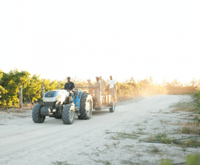 AYAMA'S 2018/2019 HARVEST SEASON COMES TO A VICTORIOUS CLOSE