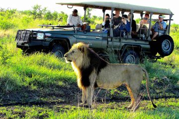 A MAGICAL WINTER SAFARI BECKONS AT TAU GAME LODGE
