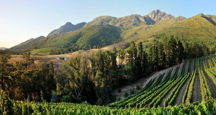 FRANSCHHOEK MYSTERY WEEKENDS - A MUST FOR YOUR BUCKET LIST