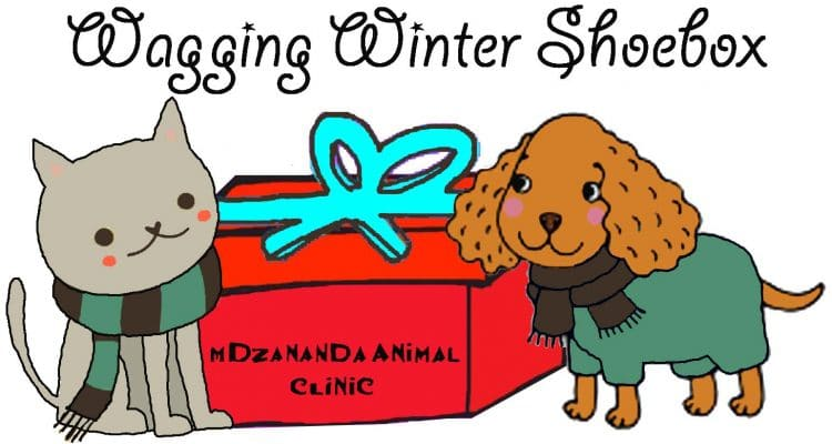 PACK A WAGGING WINTER SHOE BOX TO KEEP ONE PET WARM THIS WINTER