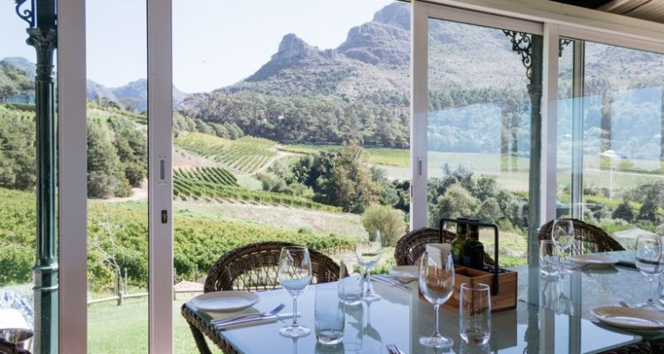 CELEBRATE WOMEN'S DAY WITH WATERBLOMMETJIES AND WINE AT CONSTANTIA GLEN
