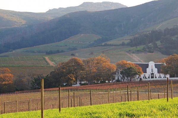 SA'S OLDEST WINE ESTATE CELEBRATES 334 YEARS OF UNINTERRUPTED WINE PRODUCTION