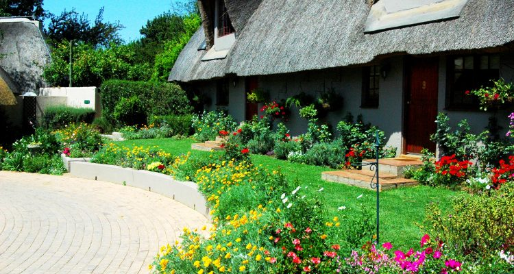 SAVING WATER IN YOUR GARDEN IN THE HEIGHT OF THE SUMMER!