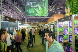 VISIT THE GLOBAL MARKETPLACE FOR EVERYTHING CANNABIS AT THE CANNABIS EXPO
