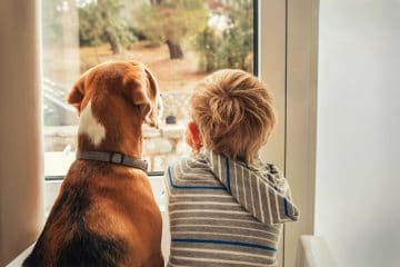 HELP YOUR KIDS TAKE THE LEAD WITH PET DUTIES DURING LOCKDOWN