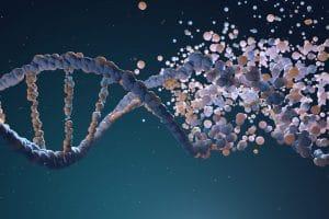 DNA TEST HELPS UNDERSTAND ONE'S IMMUNITY