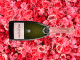 CHAMPAGNE BOLLINGER ROSÉ – ABSOLUTELY FABULOUS FOR MOTHER'S DAY