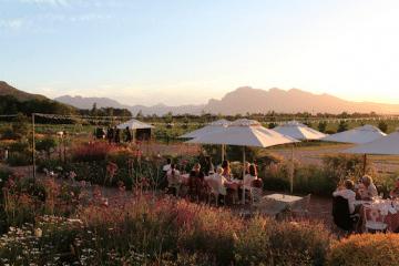 AVONDALE WINE ESTATE – A MUST VISIT THIS SUMMER!