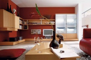 living-room-color-schemes-home-decorating-significant-undertaking-39646