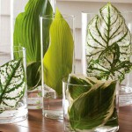 Styling with Foliage
