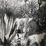 Pierre Frey fabric print - Black & White chic foliage