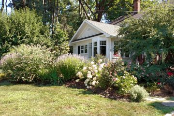 Make your garden more water efficient Private Property