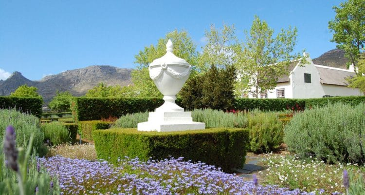 Steenberg Hotel & Spa is an idyllic retreat and one of the jewels of the Constantia Wine Valley. Catherine Schulze, the General Manager, has been the proud custodian of the property for over a decade, melding its 17th century origins with modern day, world-class hospitality.