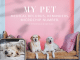 THE ULTIMATE APP FOR SOUTH AFRICANS PET PARENTS