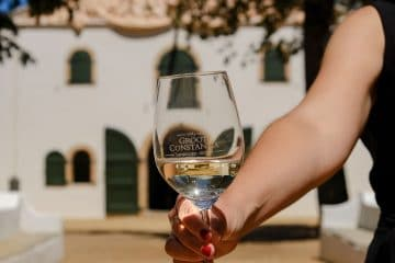 CAPE TOWN PRODUCED SAUVIGNON BLANC NAMED BEST IN THE WORLD