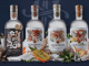 SOUTH AFRICA'S HIGHEST AWARDED GIN RANGE