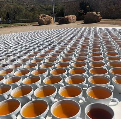 ROOIBOS INDUSTRY PLEDGES CONTINUED COMMITMENT TO SUSTAINABLITY AHEAD OF WORLD ENVIRONMENT DAY (5 JUNE) VIA STRIKING ART INSTALLATION